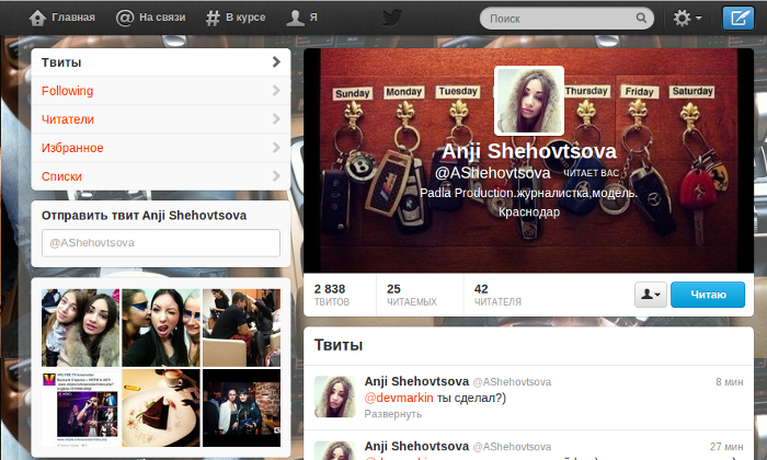 twitter new interface